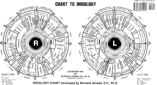 iridology eye chart